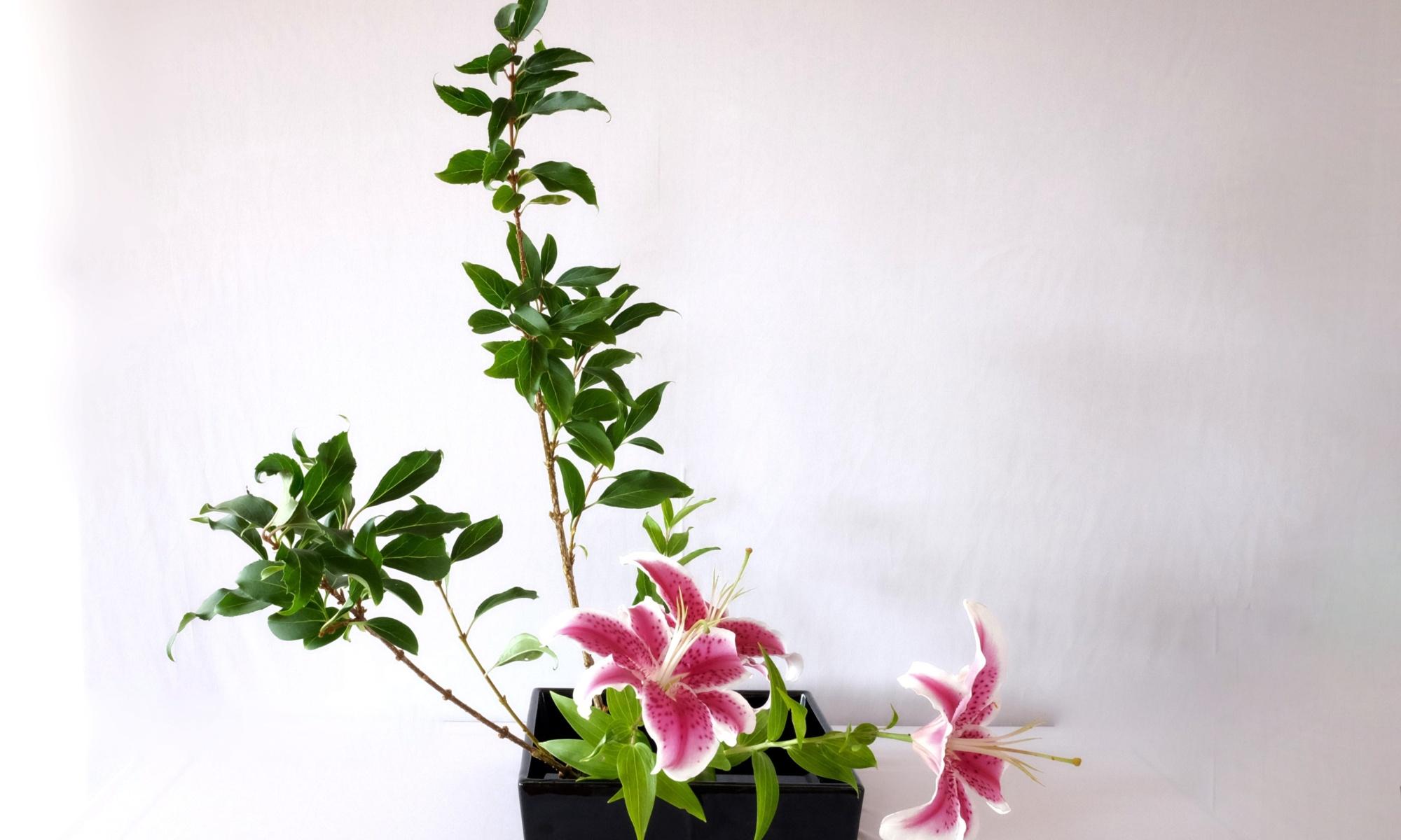General Archives I Love Ikebana